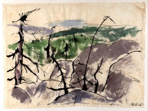 1946007.jpg